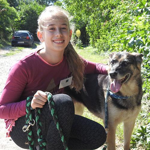 Szentendrei Árvácska: kutyasétáltatás
