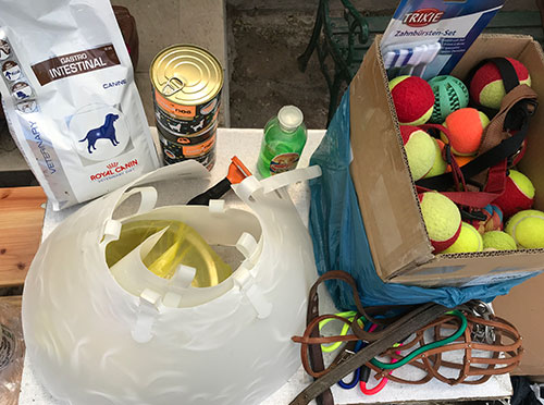 Szentendrei Árvácska: anonim adomány