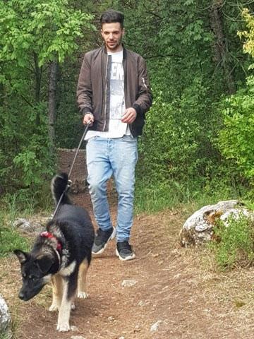 Szentendrei Árvácska menhely: beszámoló Lejlától
