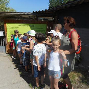 Szentendrei Árvácska: csoportos iskolai látogatás