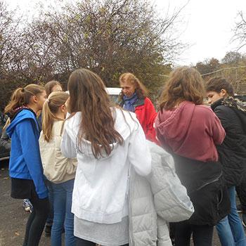 iskolai csoportok: 50 órás közhasznú munkavégzés