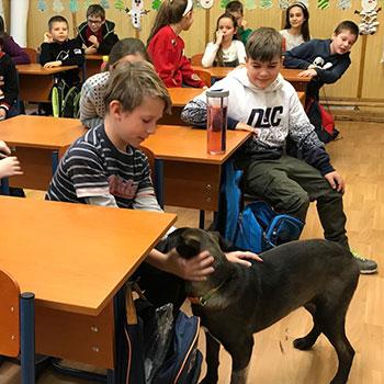 állatvédelmi oktatás iskolákban