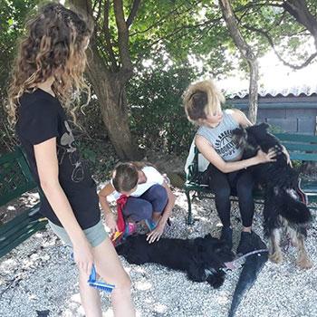 Árvácska: állatvédelmi nyári tábor